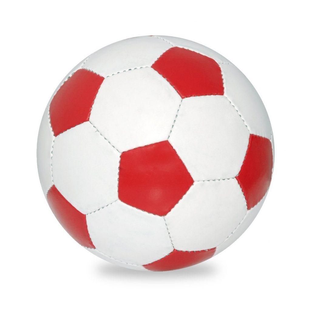 Coupe du monde 2019 : les secrets des footballeuses américaines